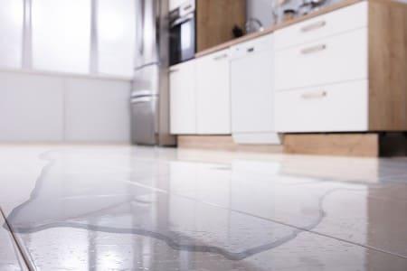 plumbing leak with water on kitchen floor