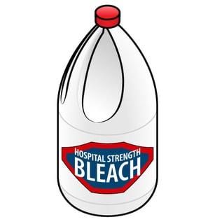 can bleach to kill drain flies