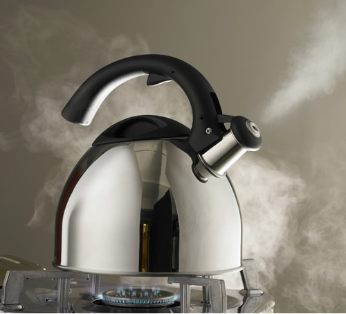 boiling water to kill drain flies